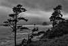 Quiet Contemplation - A stormy night along the Oregon Coast near Cannon Beach