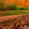 Colorful Streambed - Coyote Gulch - Utah