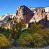Big Bend In Fall - Zion National Park