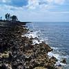 Discovery Island Shoreline