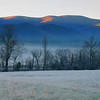 Hard Frost in Cades Cove, TN Great Smoky Mountains National Park, TN