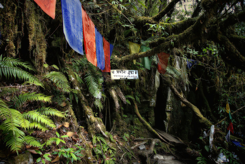 #414 Buddhist monastery in the jungle, Arunachal Pradesh state, Northeast India