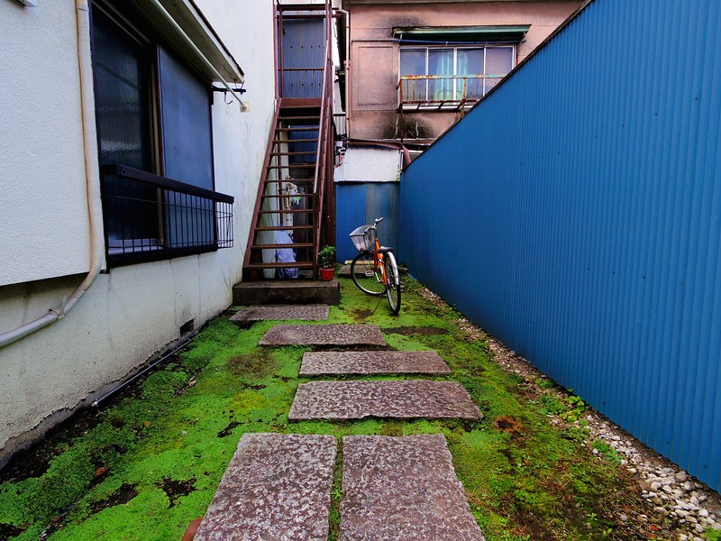 Blue Walls with Green Floor - Tokyo, Japan