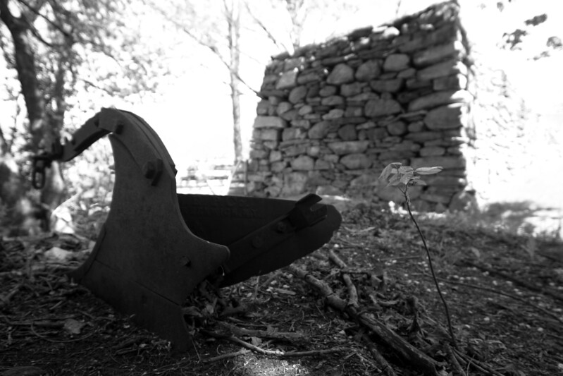 "An antique plow and stone wall on a farm in Ashford, CT.  Photographed for the book ""America 24/7"" on May 17, 2003.  © Brett Mickelson."