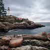 Lighthouse Park - Logs
