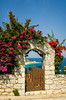 A fence and gate with bougainvillea flowers near Aereopoli, Greece.