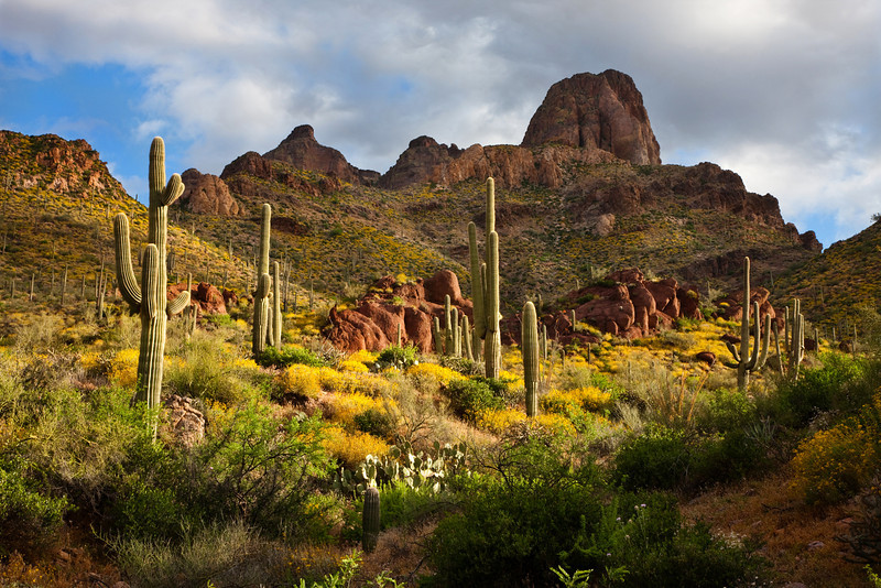 Arizona - Superstition Mountains