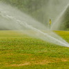 watering green grass lawn on golf course