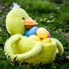 easter duck basket
