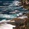 Bondi to Coogee Cliff Walk