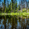 """Can't See The Lake For The Trees""  Tall pines cast their magical reflection upon Eleanor Lake in Yellowstone National Park in Wyoming."