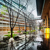 """<h2>A Rainy Scene in Tokyo</h2> <br/>I stayed here one afternoon for a short bit in the shade. I really liked how everything was wet and the background was a clean white with complex lines all over the place. It's hard to explain why I liked the feel of this place — I just did. Part of it was that I like the wet, reflective ground without actually needing to stay in the rain. I love a good rain shot, but I hate standing in the rain! I feel like my mom is always telling me to get out of the rain or I will catch a cold!<br/><br/>- Trey Ratcliff<br/><br/><a href=""""http://www.stuckincustoms.com/2013/06/03/a-rainy-scene-in-tokyo/"""" rel=""""nofollow"""">Click here to read the rest of this post at the Stuck in Customs blog.</a>"""