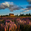 """<h2>The Lupins at Lake Tekapo</h2> <br/>I stopped at Lake Tekapo on the way to Christchurch for the great event there. Jason Law had told me all about the lupins here, so I was keen to see for myself! It was good to meet Jason and his crew there for a bit of shooting at sunset!<br/><br/>I enjoyed this spot so much that I came back on my drive home from Christchurch. And, if I were to speculate, I think I'll visit this place about 1,000 more times!<br/><br/>- Trey Ratcliff<br/><br/><a href=""""http://www.stuckincustoms.com/2012/12/10/the-lupins-at-lake-tekapo/"""" rel=""""nofollow"""">Click here to read the rest of this post at the Stuck in Customs blog.</a>"""