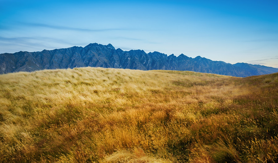 High Atop Deerpark Heights - The Remarkables