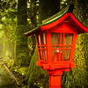 """<h2>The Lamp in Hakone</h2> <br/>The entire time I was in Hakone, it would not stop raining. This is not a great thing, when you finally make it to a place you are very excited about and there is a torrential downpour. So what to do? Well I didn't want to walk away empty-carded (new word I just made up – feel free to use it!), so I lugged out the umbrella and took a stroll to see what I could find. And now, I'm happy I did.<br/><br/>- Trey Ratcliff<br/><br/><a href=""""http://www.stuckincustoms.com/2013/07/18/the-lamp-in-hakone/"""" rel=""""nofollow"""">Click here to read the rest of this post at the Stuck in Customs blog.</a>"""