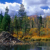 Beaver Lodge - Colorado