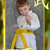 Sports Card Sample - Martial Arts<br /> Available at Single Portrait w/ Decorative Border Prices