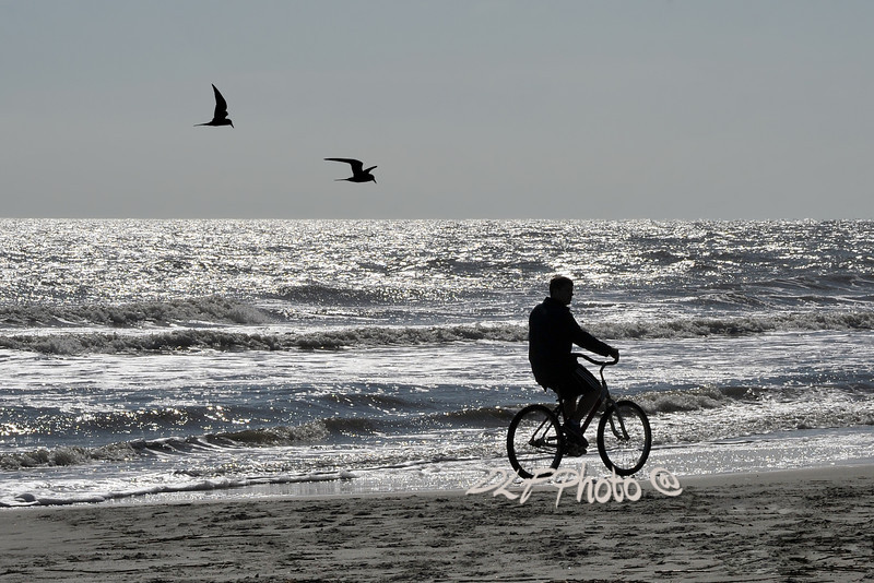lone bicycle rider on beach   Order framed, metal, acrylic print, canvas, fine art print, photo print at this website -  http://fineartamerica.com/featured/lone-biker-on-beach-dan-friend.html
