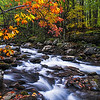 Great Smoky Mountains Cascade