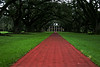 The Street: Oak Alley Plantation Front drive