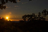 D Henry - Sunset from hiking only section - Purisima Creek Redwoods OSP Category: Landscapes