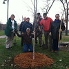 Inaugural Iowa City TreeKeepers volunteers celebrate their first successful community tree planting at Lower City Park. HH