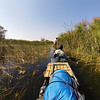 Poling through tall grasses and channels that are dug out by hippos and elephants.