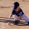 Alpine_American_Tee_Ball1-8213
