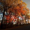 Bear Mountain Fall Colors Sunset