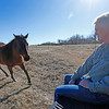 Stephen Davenport, safety coordinator for the City of Stillwater, works livestock on his ranch in Cleveland.