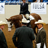 Judges compare notes at the Pinto World Championships being held in Tulsa through the weekend.