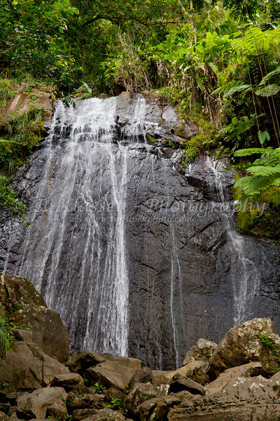 The La Coca falls in El Yunque National Forest, Puerto Rico, West Indies.