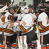 sectionals vs Fulton 2-19-15 456