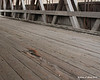 12.09.2013  The driving deck of the Packard Hill Covered bridge is showing some wear and tear