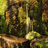 Water Fall on Mossy Rocks