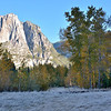 Early morning sunrise in Yosemite Heavy frost blankets the meadows.