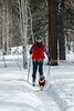 Model Released, Marilyn Leftwich Cross-country Skiing with Minature Schnauzer named Duffy, La Plata County, Colorado, USA, North America