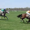 Middleburg Spring Races