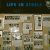 Life in Steele County 1968