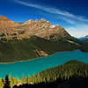 A view of Peyto Lake from high above in Banff National Park in Alberta Canada