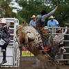 Bull riding at the rodeo, 2