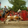 Steer roping at the rodeo