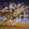 rodeo houston march 16 hr-3446