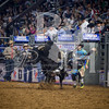 rodeo houston march 17-6878