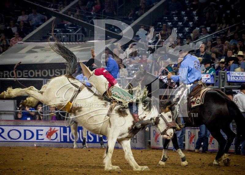 rodeo houston march 18 hr-7690