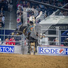 Rodeo Houston March 19 HR-0335