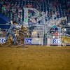 Rodeo Houston March 20 hr-1720