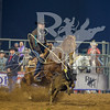 Rodeo Houston March 20 hr-1694