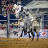 rodeo houston march 20 hr-2664