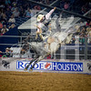rodeo houston march 20 hr-2659